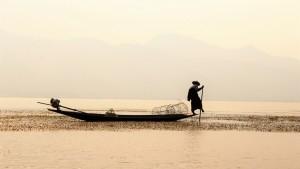 Beenroeier Inle Lake Myanmar