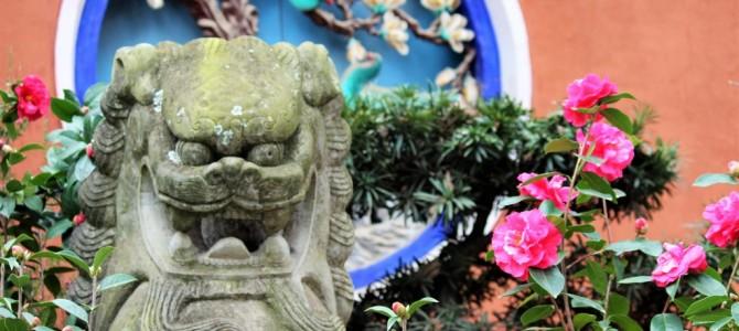 Wereldreis #48 | Via Nanning en Kunming naar Laos