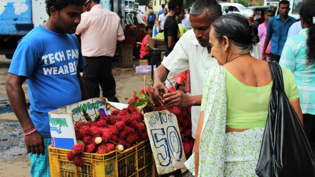 REISFILM   Rondreis Sri Lanka: divers, kleurrijk en relaxt