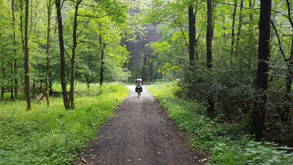 Dag 3 fietsen naar Berlijn door de bossen