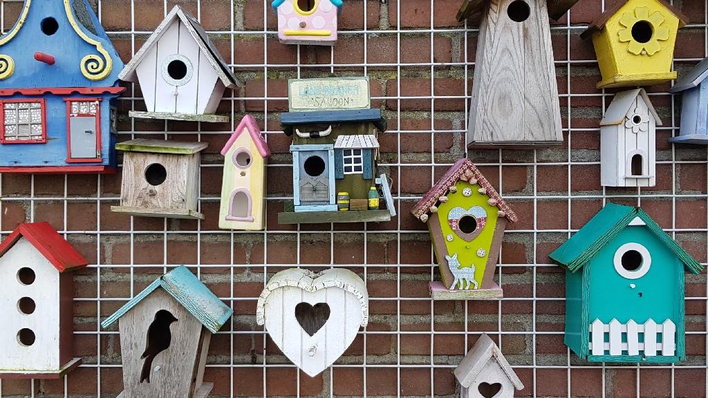 Trekvogelpad-etappe-2-Alkmaar-tot-De-Rijp-vogelhuisjes-Akersloot