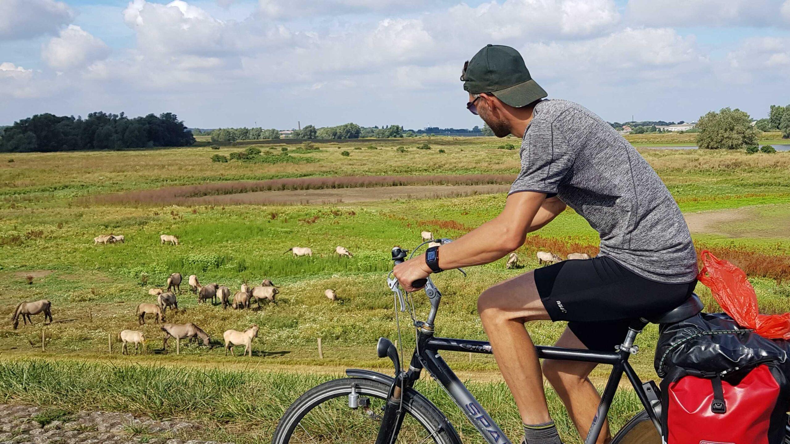 Ronde-van-Nederland-op-de-fiets-JP