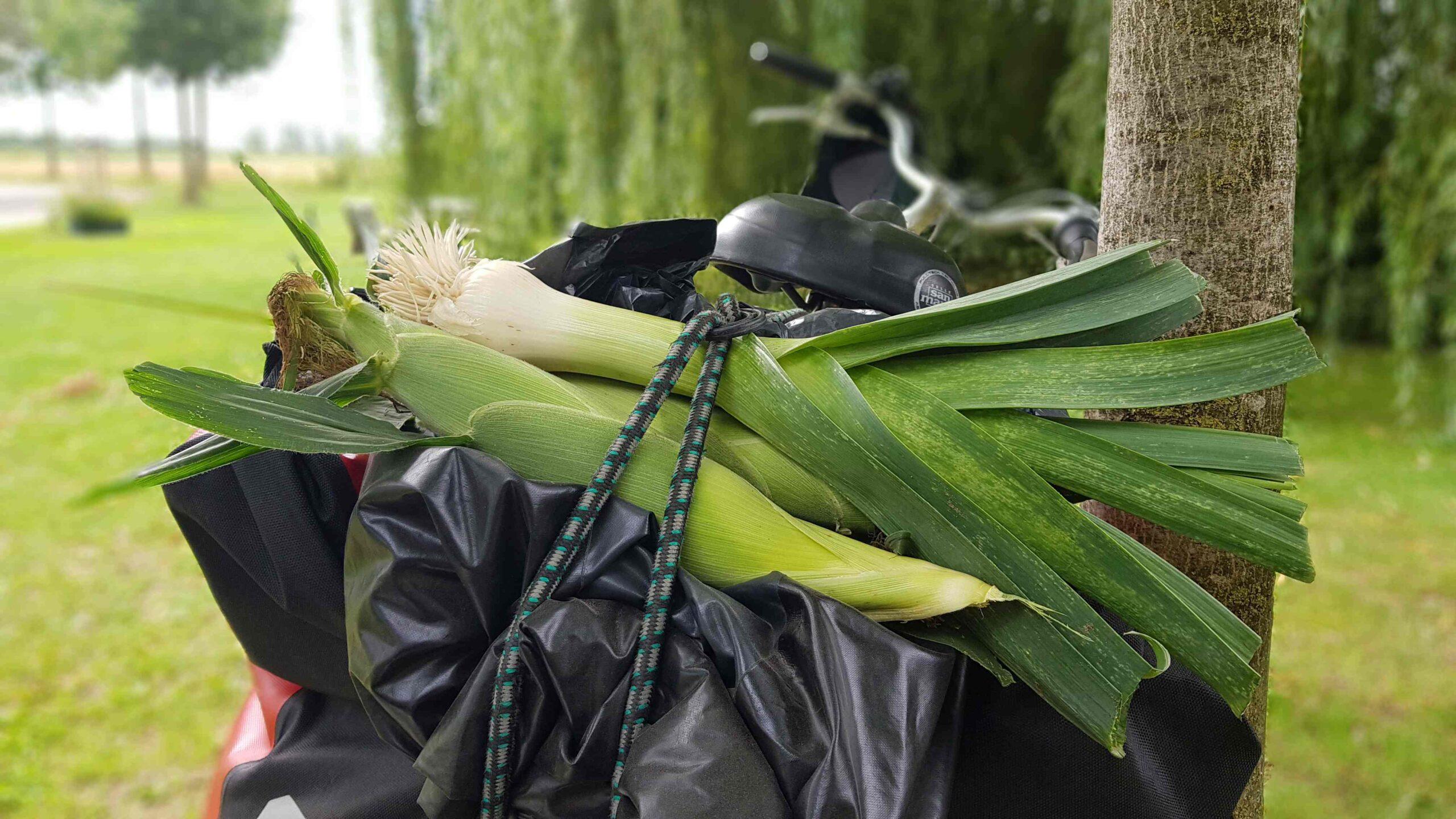 Ronde-van-Nederland-op-de-fiets-prei-voor-de-groentensoep