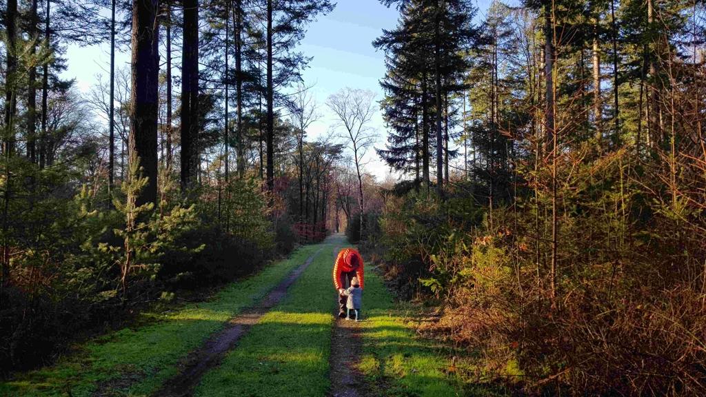 Trekvogelpad etappe 10, Lotje opwarmen bos