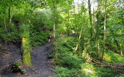 Dutch Mountain Trail etappe 1: Eygelshoven tot Vaals