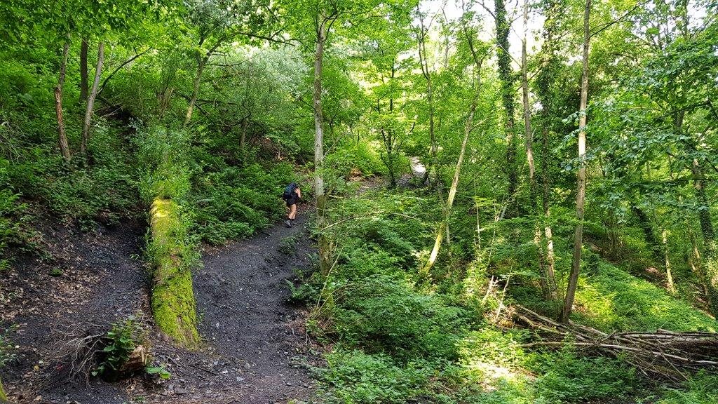 Dutch Mountain Trail beklimmen Wilhelminaberg