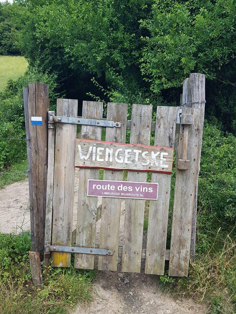 Dutch Mountain Trail dag 2 Route des vins
