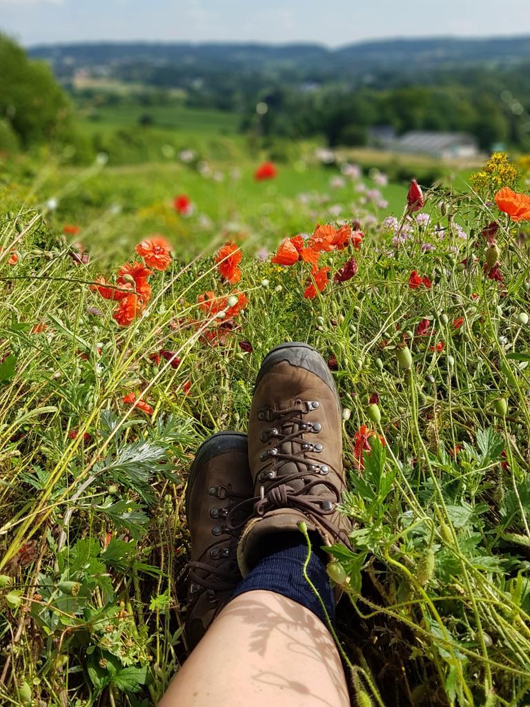 Dutch Mountain Trail etappe 1 terrasje bij Belle vue