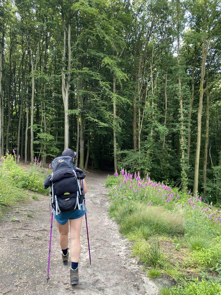Dutch Mountain Trail etappe 1 wandelen Paula