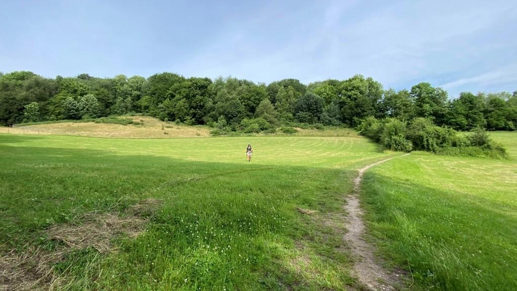 DMT dag 3 hiken in Limburg open velden langs bosrand