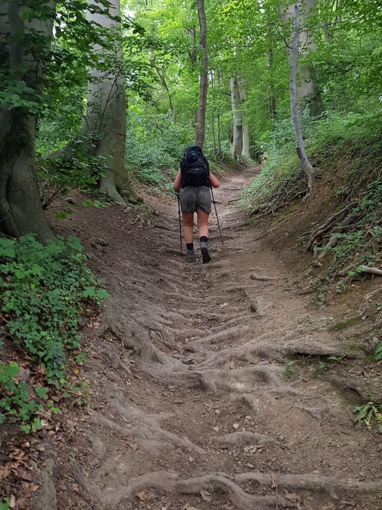 DMT etappe 3 klimmen in het bos