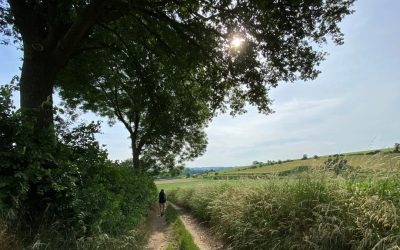 Dutch Mountain Trail etappe 3: Gulpen tot Mheer