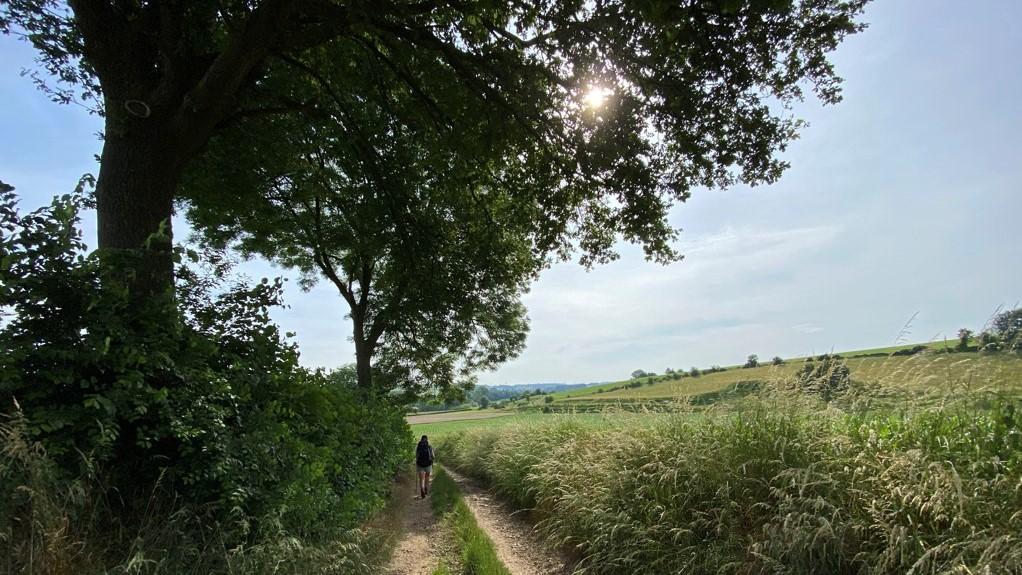 Dutch Mountain Trail dag 3 wandelen over mooie paden