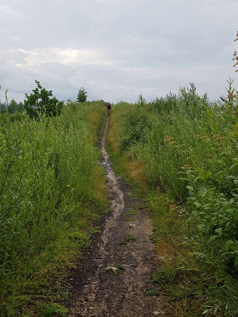 Dutch Mountain Trail dag 4 wandelpaden langs de Maas